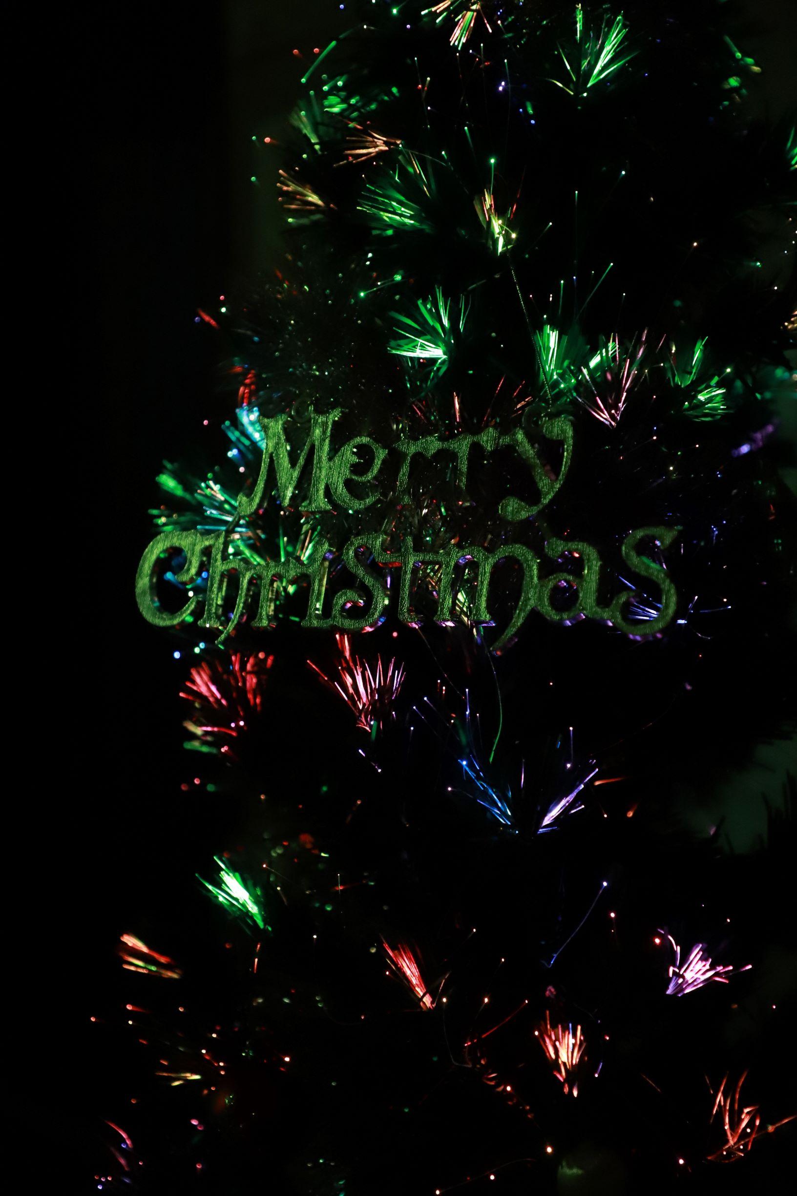 クリスマスイルミネーション ~夜の部~イメージ